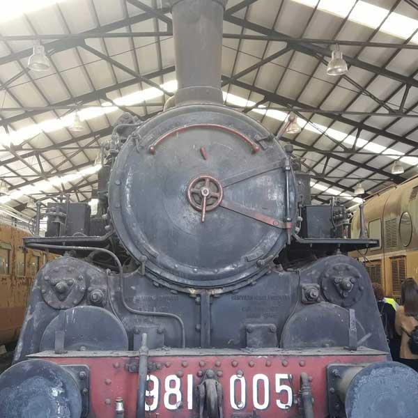 Pedalata per le vie della città e visita al deposito dei treni antichi